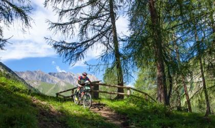 Mountain Bike Week at Chalet Silvretta